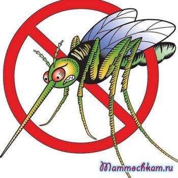 Укусило насекомое?